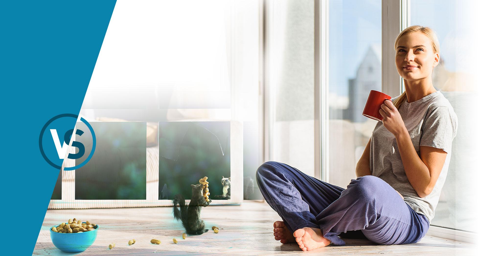 slide home vitrerie savoyarde